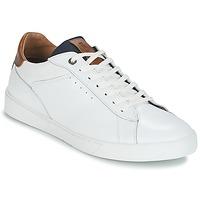 鞋子 男士 球鞋基本款 Redskins AMICAL 白色