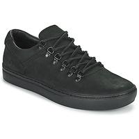 鞋子 男士 球鞋基本款 Timberland 添柏嵐 ADV 2.0 CUPSOLE ALPINE OX 黑色