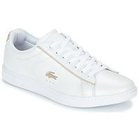 鞋子 女士 球鞋基本款 Lacoste CARNABY EVO 118 6 白色