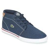 鞋子 男士 球鞋基本款 Lacoste AMPTHILL 118 1 蓝色