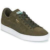 鞋子 男士 球鞋基本款 Puma 彪马 SUEDE CLASSIC + 卡其色 / 白色