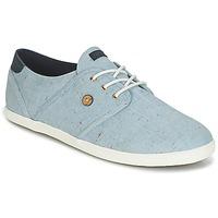 鞋子 球鞋基本款 Faguo CYPRESS COTTON 蓝色