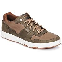 鞋子 男士 球鞋基本款 Caterpillar LINE UP CANVAS 棕色