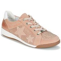 鞋子 女士 球鞋基本款 Ara ROM 玫瑰色