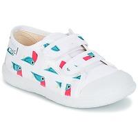 鞋子 女孩 球鞋基本款 Citrouille et Compagnie GLASSIA 白色