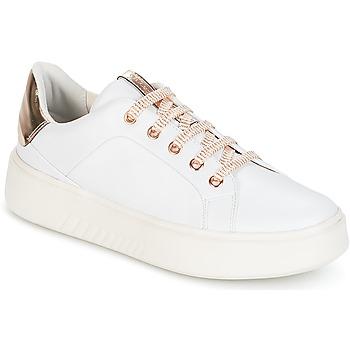 鞋子 女士 球鞋基本款 Geox 健乐士 D NHENBUS A 白色