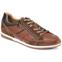 鞋子 男士 球鞋基本款 Geox 健乐士 U RENAN C 棕色