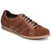鞋子 男士 球鞋基本款 So Size GOPINETTE 棕色