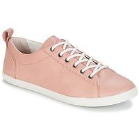 鞋子 女士 球鞋基本款 P-L-D-M by Palladium BEL NCA 玫瑰色