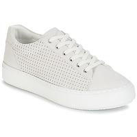 鞋子 女士 球鞋基本款 P-L-D-M by Palladium MALIGA SUD 白色