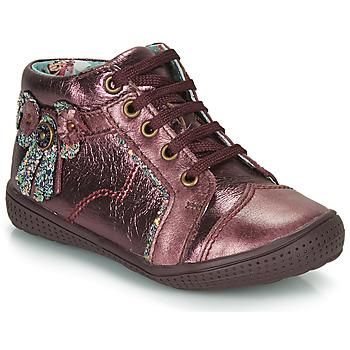 鞋子 女孩 短筒靴 Catimini RHUBARBE Vte / 波尔多红