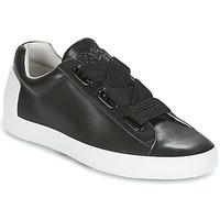 鞋子 女士 球鞋基本款 Ash 艾熙 NINA 黑色