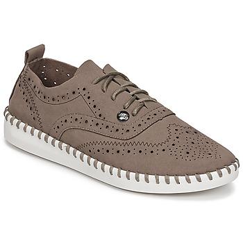 鞋子 女士 德比 Les P'tites Bombes DIVA 灰褐色