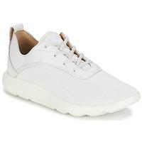 鞋子 男士 球鞋基本款 Timberland 添柏岚 FLYROAM 白色