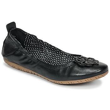 鞋子 女士 凉鞋 Kickers ROMMY 黑色