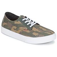 鞋子 男士 板鞋 Globe Motley LYT 绿色