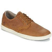 鞋子 男士 球鞋基本款 Timberland 添柏岚 FULK LP OX 棕色