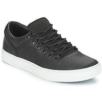 鞋子 男士 球鞋基本款 Timberland 添柏岚 Adv 2.0 Cupsole Alpine Ox 黑色
