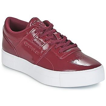 鞋子 女士 球鞋基本款 Reebok Classic WORKOUT LO FVS 波尔多红