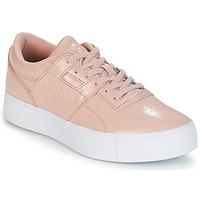 鞋子 女士 球鞋基本款 Reebok Classic WORKOUT LO FVS 玫瑰色
