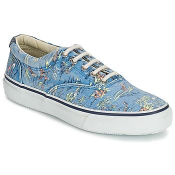 鞋子 男士 球鞋基本款 Sperry Top-Sider STRIPER HAWAIIAN 蓝色