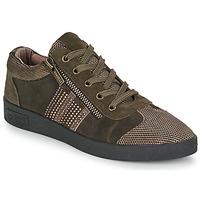 鞋子 女士 球鞋基本款 MAM'ZELLE BADRIA 棕色