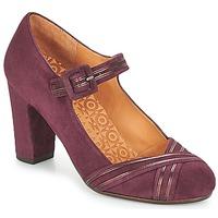 鞋子 女士 高跟鞋 Chie Mihara KALEI 波尔多红