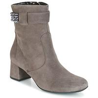 鞋子 女士 短靴 Ara GESPIRINO 灰色