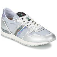 鞋子 女士 球鞋基本款 Serafini LOS ANGELES 银灰色 / 灰色