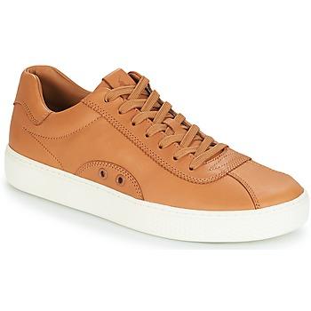 鞋子 男士 球鞋基本款 Polo Ralph Lauren COURT 100 棕色