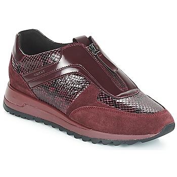 鞋子 女士 球鞋基本款 Geox 健乐士 D TABELYA 波尔多红
