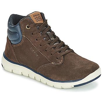 鞋子 男孩 高帮鞋 Geox 健乐士 J XUNDAY BOY 棕色 / 海蓝色
