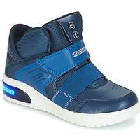 鞋子 男孩 球鞋基本款 Geox 健乐士 J XLED BOY 海蓝色