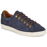 鞋子 男士 球鞋基本款 Armistice DRONE HOOKS 海蓝色