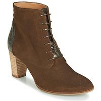 鞋子 女士 短筒靴 André CLAUDIA 灰褐色