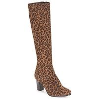 鞋子 女士 都市靴 André GANTELET 4 Leopard