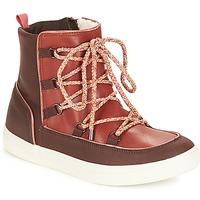 鞋子 女士 短筒靴 André SNOW 棕色