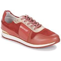 鞋子 女士 球鞋基本款 André SPRINT 玫瑰色