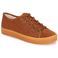鞋子 女士 球鞋基本款 André STARLIGHT 棕色