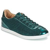 鞋子 女士 球鞋基本款 André VELVET 绿色