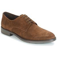 鞋子 男士 德比 André LARDY 棕色
