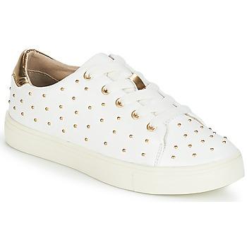 鞋子 女士 球鞋基本款 André ARDY 白色