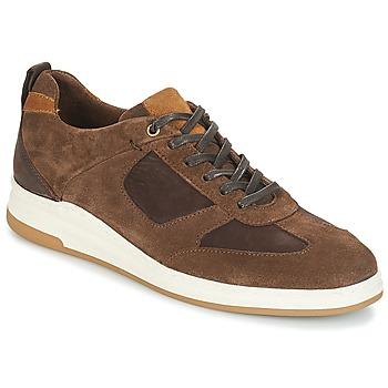 鞋子 男士 球鞋基本款 André CINZA 棕色