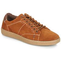 鞋子 男士 球鞋基本款 André LENNO 棕色