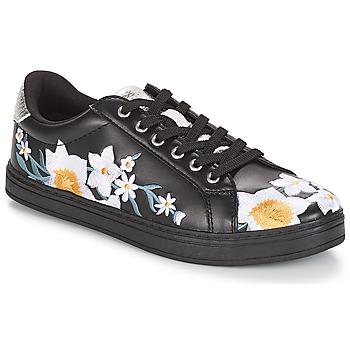 鞋子 女士 球鞋基本款 André COROLLE 黑色