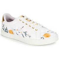 鞋子 女士 球鞋基本款 André COROLLE 白色