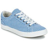 鞋子 女士 球鞋基本款 André SESAME Rayé / 藍色