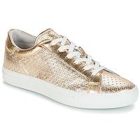 鞋子 女士 球鞋基本款 André FELICIA 金色