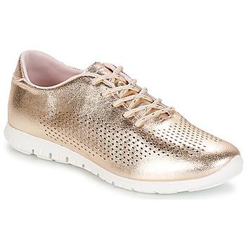 鞋子 女士 球鞋基本款 André AIKIDO 金色