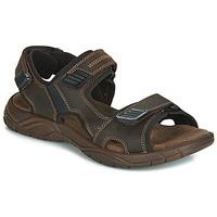 鞋子 男士 凉鞋 André MIAMI 棕色